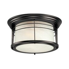 Senecaville 2 Light Outdoor Flush Mount