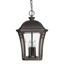 Wabash 3 Light Outdoor Hanging Lantern