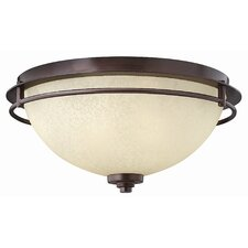 <strong>Hinkley Lighting</strong> Stowe 2 Light Flush Mount