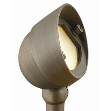 <strong>Hinkley Lighting</strong> Hardy Island 1 Light Outdoor Spotlight
