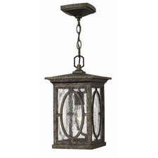 Randolph 1 Light Outdoor Hanging Lantern