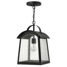 Putney Bridge 1 Light Outdoor Hanging Lantern