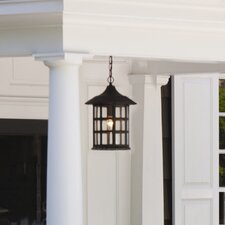 Freeport 1 Light Hanging Lantern