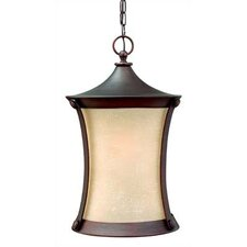 Thistledown 1 Light Outdoor Hanging Lantern