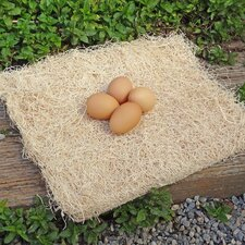 Excelsior Poultry Dog Pad