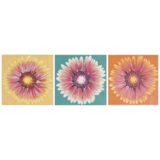 Shasta 3 Piece Painting Print on Canvas Set