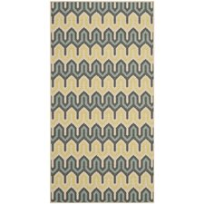 Hampton Green / Light Blue Outdoor Rug