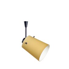 <strong>Besa Lighting</strong> Tammi 1 Light Spotlight