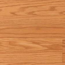 Traditions Georgetown 8mm Red Oak Laminate in Honey Plank