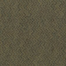 "Aladdin Energized 24"" x 24"" Carpet Tile in Enviro"