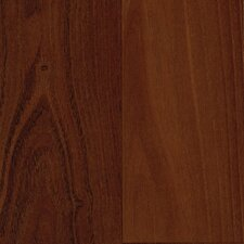 Elements Celebration 7mm Acacia Laminate in Vineyard