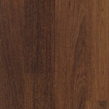 Elements Celebration 7mm Merbau Laminate in Cognac