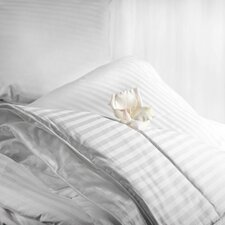 Aus Vio Winter Bedding Collection