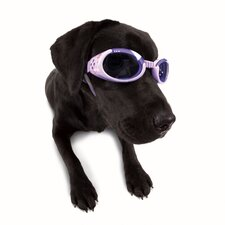 ILS Lense Dog Goggles in Lilac Flower