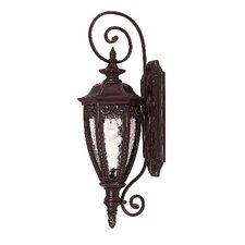 Dehart Outdoor Wall Lantern