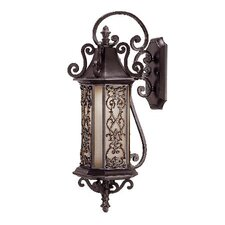 Morris Outdoor Wall Lantern
