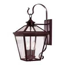 Ellijay 3 Light Outdoor Wall Lantern