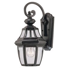 Omega 1 Light Outdoor Wall Lantern