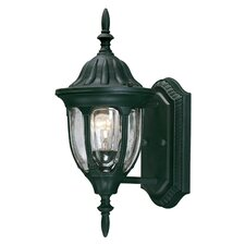 Tudor 1 Light Outdoor Wall Lantern