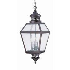 Reagan 3 Light Outdoor Hanging Lantern