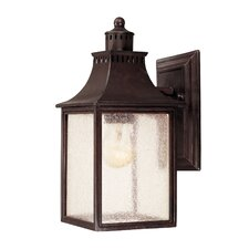 Fuller 1 Light Outdoor Wall Lantern