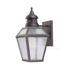 Reagan 1 Light Outdoor Wall Lantern