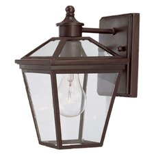 Ontario 1 Light Outdoor Wall Lantern