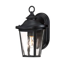 Freemont 1 Light Outdoor Wall Lantern