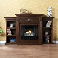 <strong>Wildon Home ®</strong> Franklin Bookcase Gel Fuel Fireplace