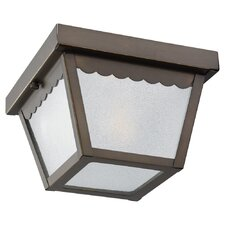 Outdoor 1 Light  Flush Mount