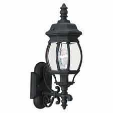 Winfield 1 Light Outdoor Wall Lantern