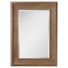 Taunton Mirror