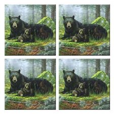 Tuftop Black Bears Coasters (Set of 4)