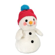 Winter Wonderland Snowman Baby Stuffed Animal