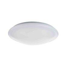 Elgin 54 Light Flush Light