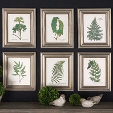 6 Piece Ferns Floral Framed Wall Art Set