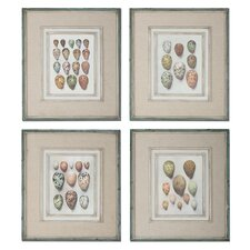 4 Piece Study of Eggs Framed Wall Art Set