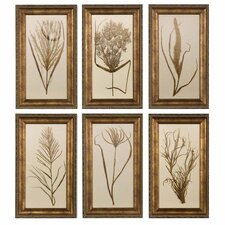 Wheat Grass Wall Art (Set of 6)