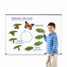 <strong>Learning Resources</strong> Giant Magnetic Butterfly Life Cycle