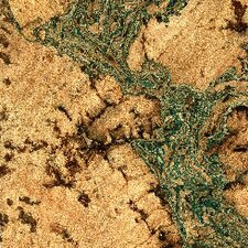 "11-7/8"" Cork Tiles Flooring in Burl with Green Tones"