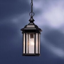 Kirkwood 1 Light Outdoor Hanging Lantern
