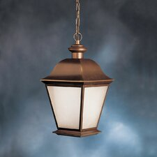 1 Light Outdoor Hanging Lantern
