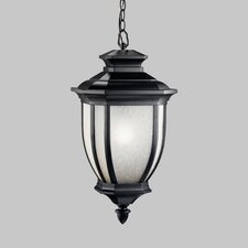 Salisbury 1 Light Outdoor Hanging Lantern