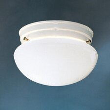 Ceiling Space 1 Light 60W Flush Mount