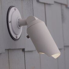 Outdoor Directional Wall Mount