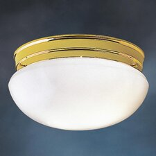 Ceiling Space 2 Light 60W Flush Mount