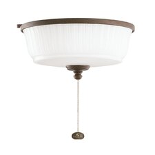 Wet One Light Ceiling Fan Light Kit