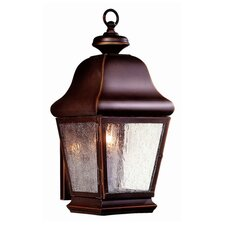Carlton 1 Light Wall Lantern