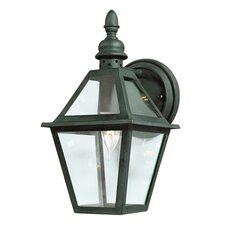 <strong>Troy Lighting</strong> Townsend 1 Light Wall Lantern