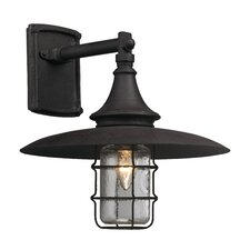 Allegany 1 Light Outdoor Wall Light